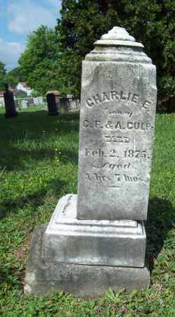 CULP, CHARLIE E. - Trumbull County, Ohio | CHARLIE E. CULP - Ohio Gravestone Photos