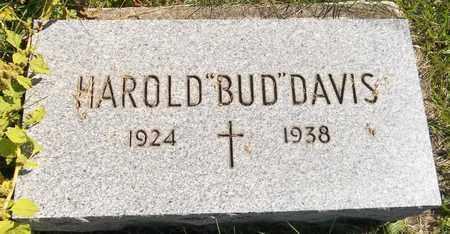 DAVIS, HAROLD - Trumbull County, Ohio   HAROLD DAVIS - Ohio Gravestone Photos