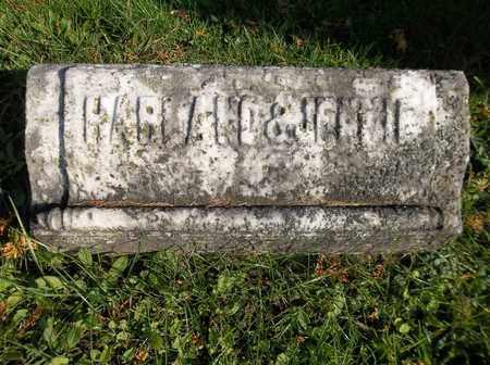 DAY, JENNIE - Trumbull County, Ohio | JENNIE DAY - Ohio Gravestone Photos