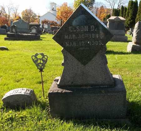 EASTON, ELSON D. - Trumbull County, Ohio | ELSON D. EASTON - Ohio Gravestone Photos