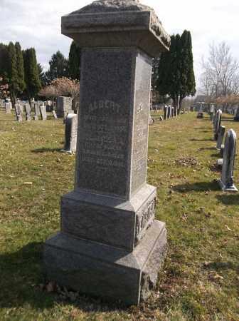 ENSIGN, CLARISSA - Trumbull County, Ohio | CLARISSA ENSIGN - Ohio Gravestone Photos