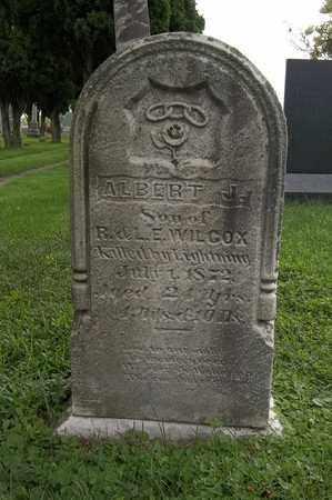 ENSIGN, ALBERT J. - Trumbull County, Ohio | ALBERT J. ENSIGN - Ohio Gravestone Photos