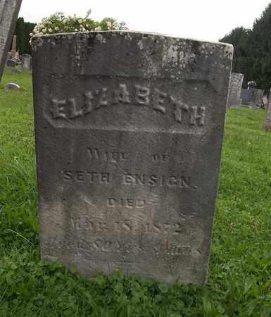 ENSIGN, ELIZABETH - Trumbull County, Ohio | ELIZABETH ENSIGN - Ohio Gravestone Photos