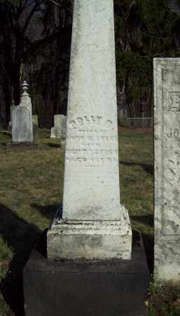 EVANS, POLLY B. - Trumbull County, Ohio | POLLY B. EVANS - Ohio Gravestone Photos