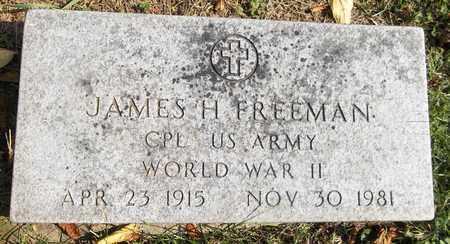 FREEMAN, JAMES H. - Trumbull County, Ohio | JAMES H. FREEMAN - Ohio Gravestone Photos