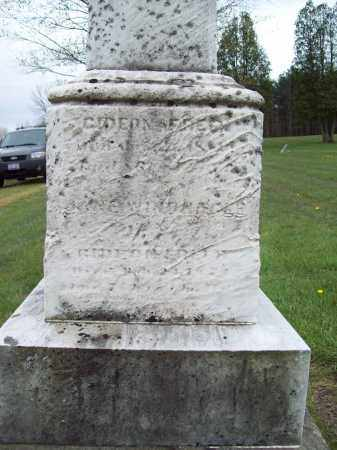 WINDNAGLE FREER, JANE - Trumbull County, Ohio | JANE WINDNAGLE FREER - Ohio Gravestone Photos