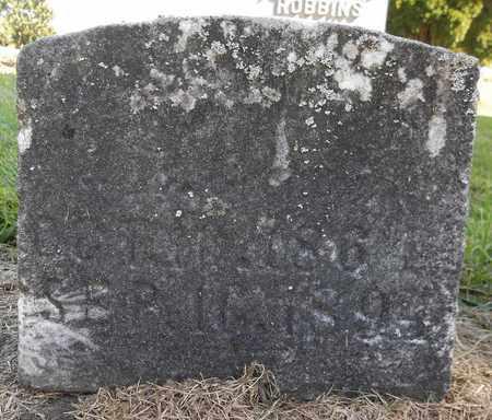 GARDINER, LOU - Trumbull County, Ohio   LOU GARDINER - Ohio Gravestone Photos