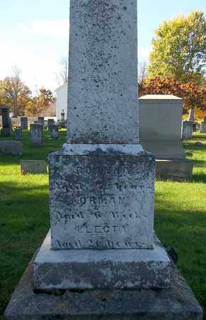 GATES, REANNA - Trumbull County, Ohio | REANNA GATES - Ohio Gravestone Photos