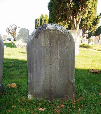 GLEASON, ALMIRA - Trumbull County, Ohio   ALMIRA GLEASON - Ohio Gravestone Photos