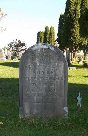 GLEASON, EDWIN - Trumbull County, Ohio | EDWIN GLEASON - Ohio Gravestone Photos