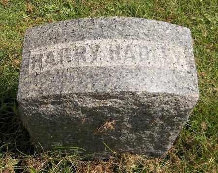 HADLEY, HARRY - Trumbull County, Ohio | HARRY HADLEY - Ohio Gravestone Photos
