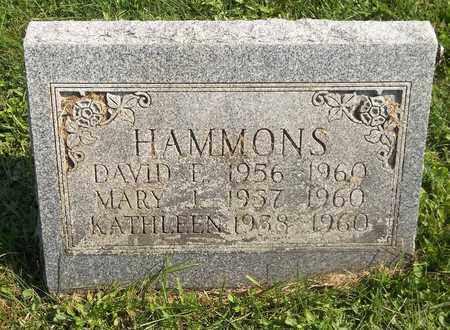 HAMMONS, DAVID F. - Trumbull County, Ohio | DAVID F. HAMMONS - Ohio Gravestone Photos