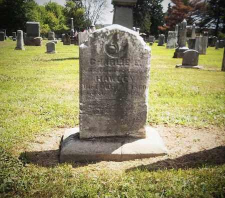 HAWLEY, CHARLIE E. - Trumbull County, Ohio   CHARLIE E. HAWLEY - Ohio Gravestone Photos