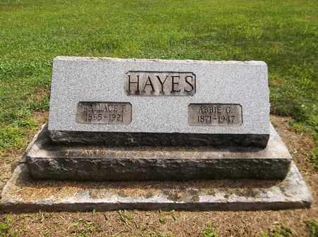 HAYES, ABBIE G. - Trumbull County, Ohio | ABBIE G. HAYES - Ohio Gravestone Photos