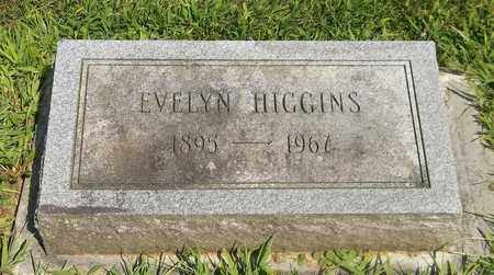 HIGGINS, EVELYN - Trumbull County, Ohio | EVELYN HIGGINS - Ohio Gravestone Photos