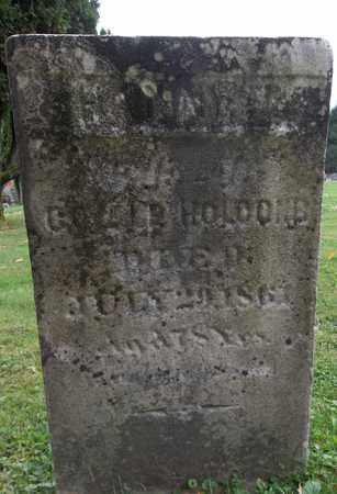 HOLCOMB, HANNAH - Trumbull County, Ohio   HANNAH HOLCOMB - Ohio Gravestone Photos