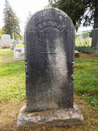 HOLETON, SARAH - Trumbull County, Ohio | SARAH HOLETON - Ohio Gravestone Photos