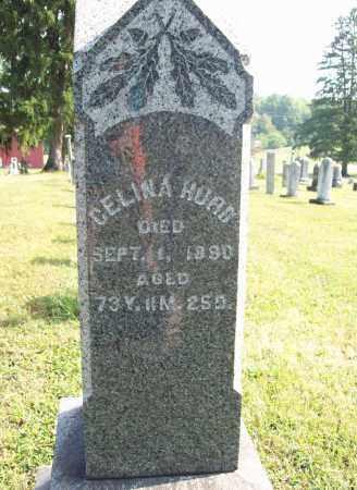 HURD, CELINA - Trumbull County, Ohio | CELINA HURD - Ohio Gravestone Photos