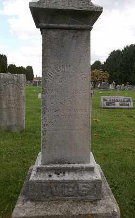 IVES, WILLIAM J. - Trumbull County, Ohio   WILLIAM J. IVES - Ohio Gravestone Photos