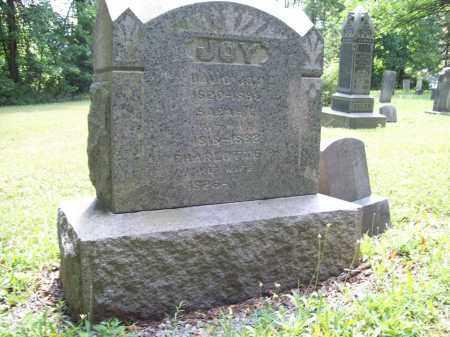 JOY, CHARLOTTE - Trumbull County, Ohio | CHARLOTTE JOY - Ohio Gravestone Photos