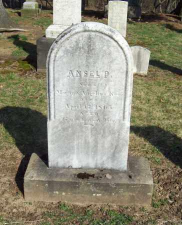 KEE, ANSEL P. - Trumbull County, Ohio | ANSEL P. KEE - Ohio Gravestone Photos