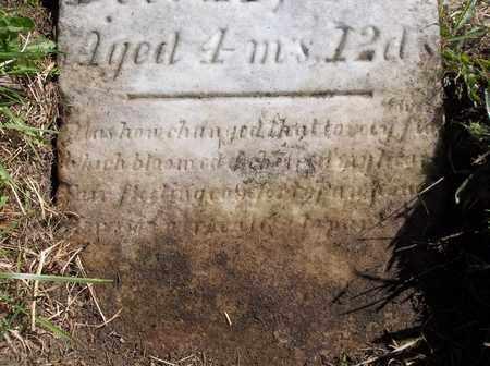 KLINGENSMITH, LOUISA M. - Trumbull County, Ohio | LOUISA M. KLINGENSMITH - Ohio Gravestone Photos