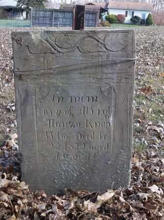 KNAPP, ALFRED ALONZO - Trumbull County, Ohio | ALFRED ALONZO KNAPP - Ohio Gravestone Photos