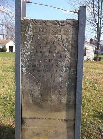 LAKE, JANE - Trumbull County, Ohio | JANE LAKE - Ohio Gravestone Photos