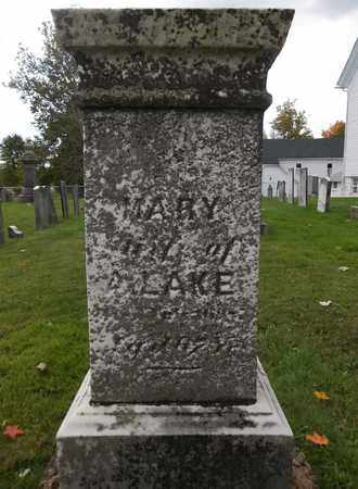 LAKE, MARY - Trumbull County, Ohio | MARY LAKE - Ohio Gravestone Photos