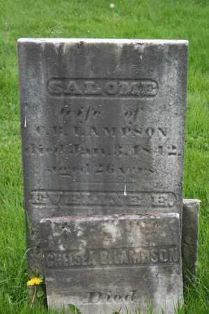 LAMPSON, CHELSEA B. - Trumbull County, Ohio | CHELSEA B. LAMPSON - Ohio Gravestone Photos