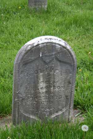 LAMSON, OLIVE - Trumbull County, Ohio   OLIVE LAMSON - Ohio Gravestone Photos