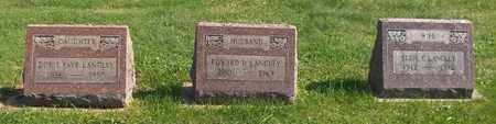 LANGLEY, DORIS FAYE - Trumbull County, Ohio | DORIS FAYE LANGLEY - Ohio Gravestone Photos