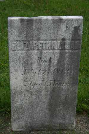 LYMAN, ELIZABETH H - Trumbull County, Ohio | ELIZABETH H LYMAN - Ohio Gravestone Photos