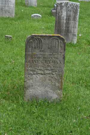 LYMAN, OLIVE - Trumbull County, Ohio | OLIVE LYMAN - Ohio Gravestone Photos