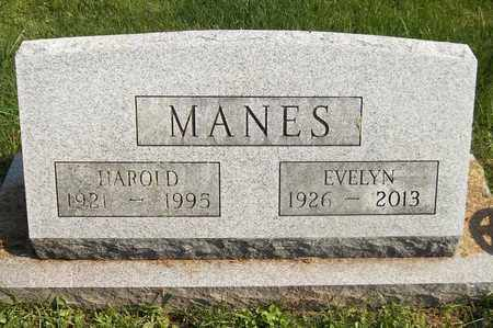 MANES, EVELYN - Trumbull County, Ohio | EVELYN MANES - Ohio Gravestone Photos