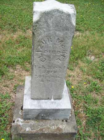 MCKEE, ELIZUR - Trumbull County, Ohio | ELIZUR MCKEE - Ohio Gravestone Photos