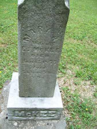 MCKEE, MARY ANN S. - Trumbull County, Ohio | MARY ANN S. MCKEE - Ohio Gravestone Photos
