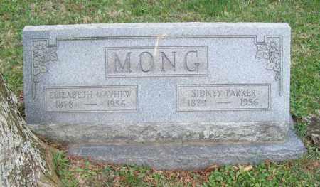 MONG, ELIZABETH - Trumbull County, Ohio | ELIZABETH MONG - Ohio Gravestone Photos