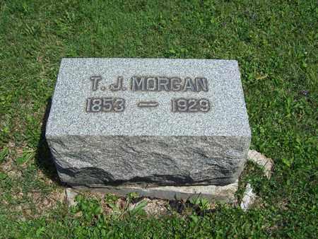 MORGAN, THOMAS JAMES - Trumbull County, Ohio | THOMAS JAMES MORGAN - Ohio Gravestone Photos