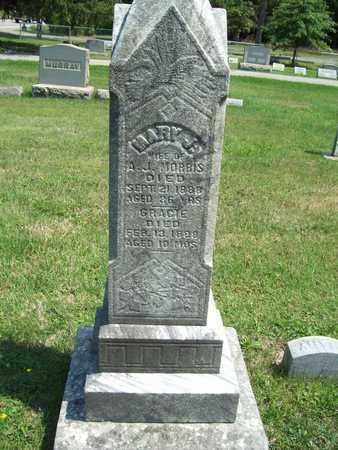 MORRIS, GRACIE - Trumbull County, Ohio | GRACIE MORRIS - Ohio Gravestone Photos