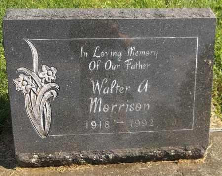 MORRISON, WALTER A. - Trumbull County, Ohio | WALTER A. MORRISON - Ohio Gravestone Photos