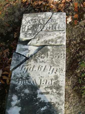 NEWBURN, JONATHAN - Trumbull County, Ohio | JONATHAN NEWBURN - Ohio Gravestone Photos