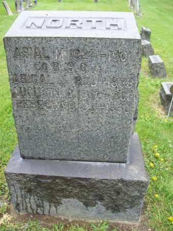 NORTH, ABIGAIL J. - Trumbull County, Ohio | ABIGAIL J. NORTH - Ohio Gravestone Photos