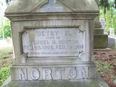 MORRIS NORTON, BETSEY - Trumbull County, Ohio | BETSEY MORRIS NORTON - Ohio Gravestone Photos