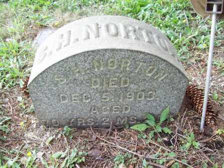 NORTON, SAMUEL HALE - Trumbull County, Ohio | SAMUEL HALE NORTON - Ohio Gravestone Photos