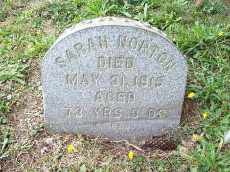 NORTON, SARAH - Trumbull County, Ohio | SARAH NORTON - Ohio Gravestone Photos