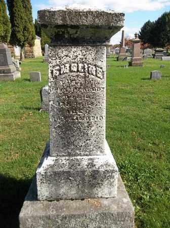 PEABODY, EMELINE - Trumbull County, Ohio | EMELINE PEABODY - Ohio Gravestone Photos