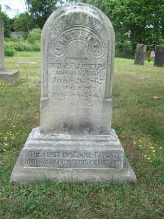 PHELPS, CHARLIE F. - Trumbull County, Ohio | CHARLIE F. PHELPS - Ohio Gravestone Photos