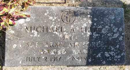 PLIZGA, MICHAEL A. - Trumbull County, Ohio | MICHAEL A. PLIZGA - Ohio Gravestone Photos