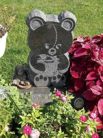 PLIZGA, TAYLOR JAY - Trumbull County, Ohio   TAYLOR JAY PLIZGA - Ohio Gravestone Photos
